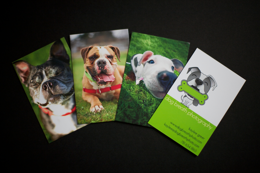 Fancy Schmancy New Business Cards! | Dog Breath Photography Blog