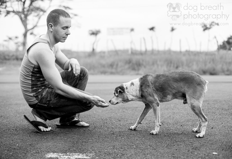 dog-photographers