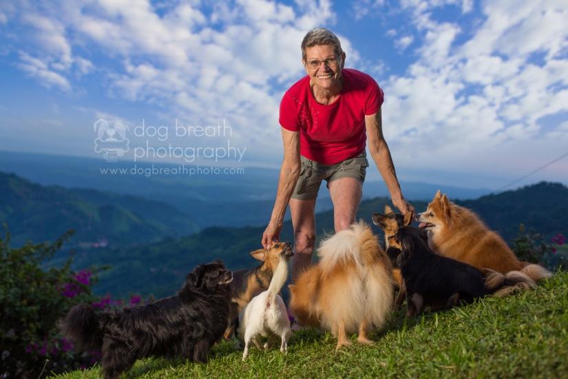 shelter-dog-photographer